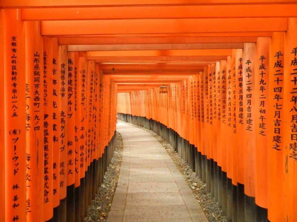 Torii rossi del santuario shintoista, Monte Inari