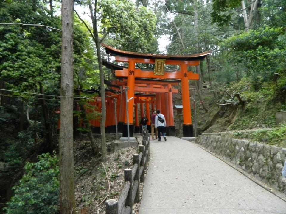 verso i torii tunnel